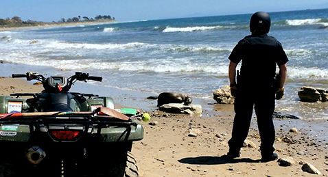 Still image of a man on a beach next to an ATV from the film Stand in the Stream.