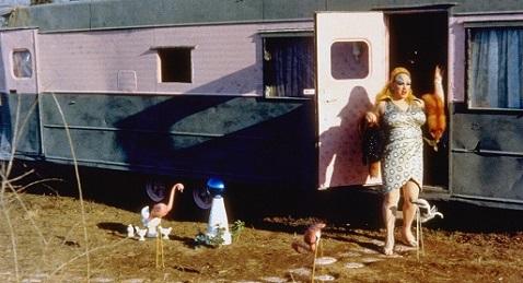 Still image from Pink Flamingos.